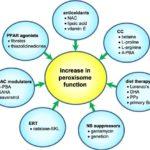 Funciones de los peroxisomas