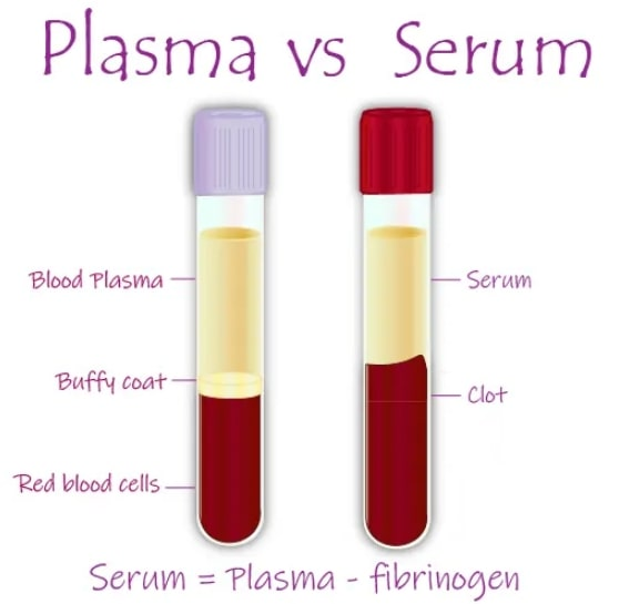 Suero VS Plasma